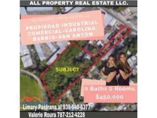 Propiedad Industrial Comercial-Carolina