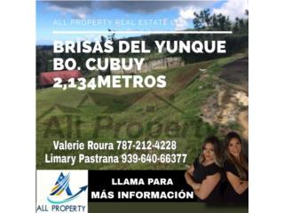 Brisas del Yunque 2,134metros, Bo. CUBUY