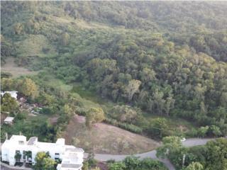 Terreno en Bo. Pedernales, Cabo Rojo