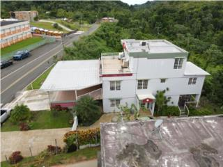 Carr 3351 km 4.1 Rio Canas Abajo