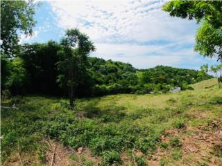 Puerto Rico Vacant Land for Sale 1,200m2 27k