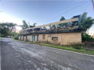 Edificio Comercial en Jayuya