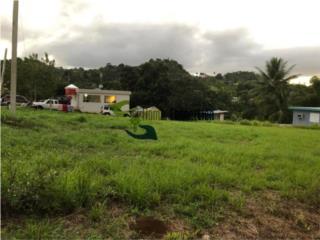 Hermoso terreno en el Bo Dos Bocas