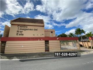 Local Comercial Ave. Roberto Clemente