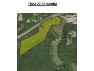 CAMUY - 22 CDAS. DE TERRENO