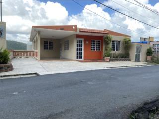 Bo. Junquito, Humacao