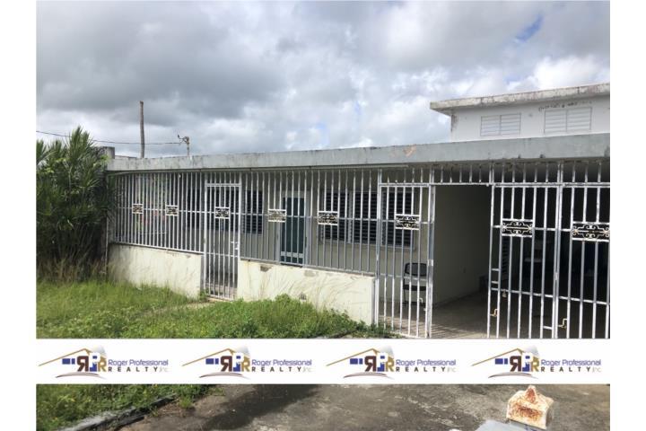 Ceiba Norte Puerto Rico