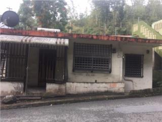 BARRIO PALOMAS SECTOR LOMAS- COMERIO $47K