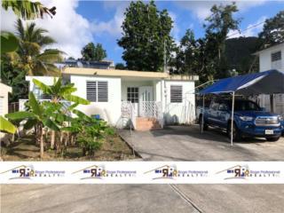 Bo Borinquen Parcelas Viejas - Caguas