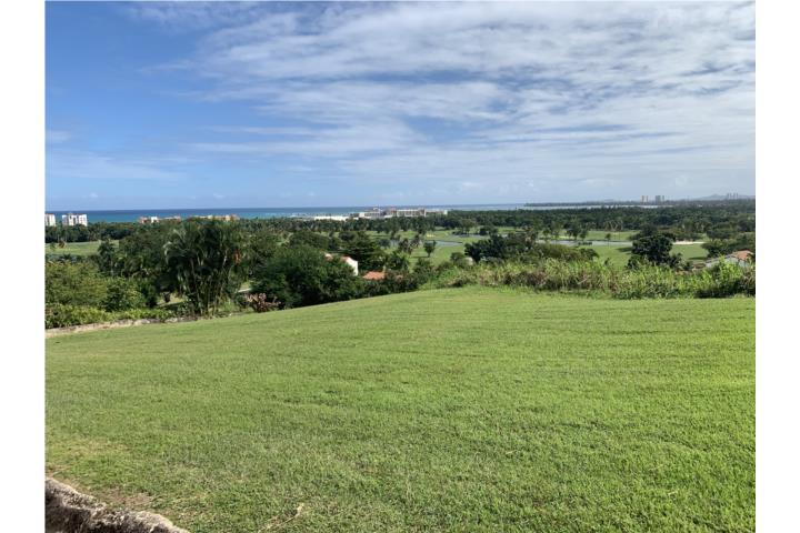 Las Vistas De Rio Mar Puerto Rico