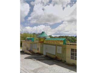 Bo San Antonio, Caguas 3 locales