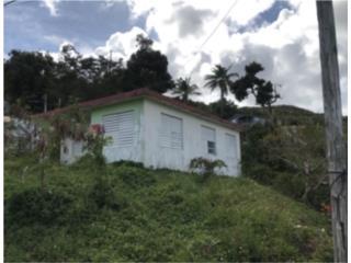 Bo. Chupacallos, Ceiba