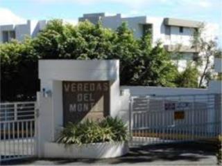VEREDAS DEL MONTE/VARIOS/787-460-4696