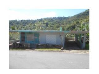 Barrio Cañaboncito, Caguas
