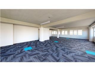 Entire Office floor for Sale in Prime Miramar