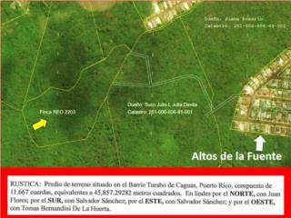 11.66 CUERDAS, Al Lado de Bosque Verde OFERTE !!
