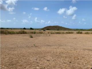 387 cuerdas de terreno en Guayama