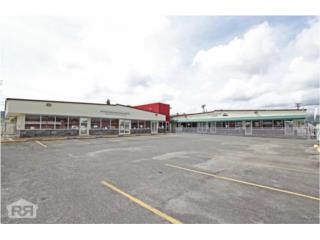 Income Producing Commercial with  AAA Tenant