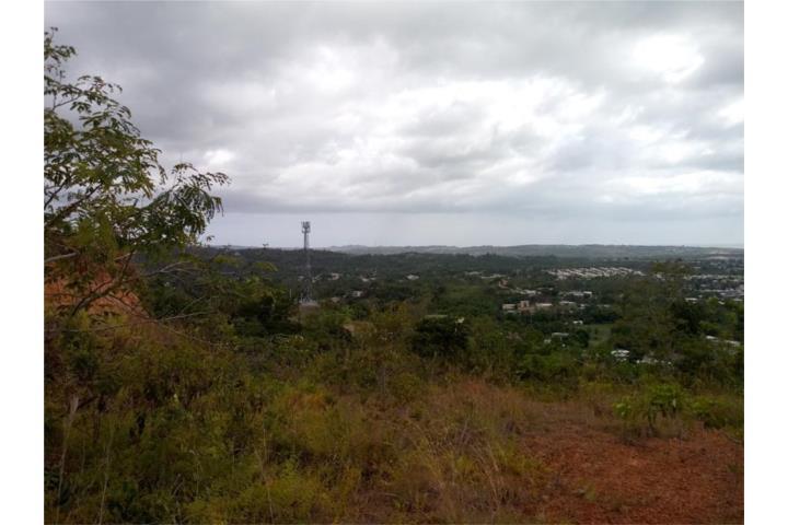 Quebrada Grande Puerto Rico