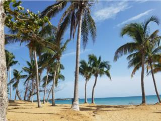 PLAYAS DEL YUNQUE SOLD