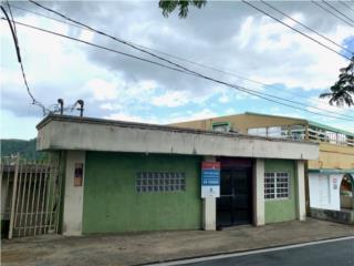 Carr. 159 Pueblo Corozal