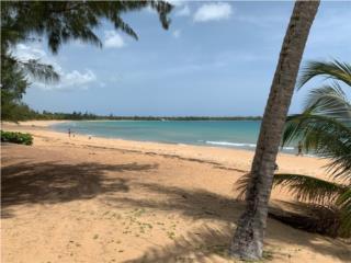 Cond Yunque Mar Apt 404
