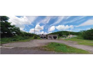 Terreno Comercial Naguabo #49 - 28,936 SF