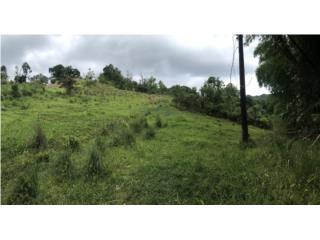 Terreno en el Bo, San Salvador de Caguas