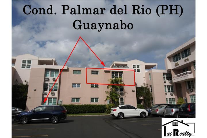 Palmar Del Rio Puerto Rico