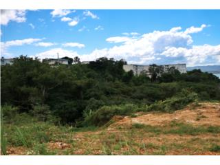 OVER 6 ACRES OF BEAUTIFUL LAND AT AGUADILLA!!