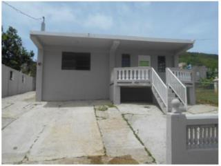 46 Macho Ceiba, PR, 00735 Ceiba County