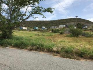Cabo Rojo Land, 15 Acres, KM 2.7 CARR 303