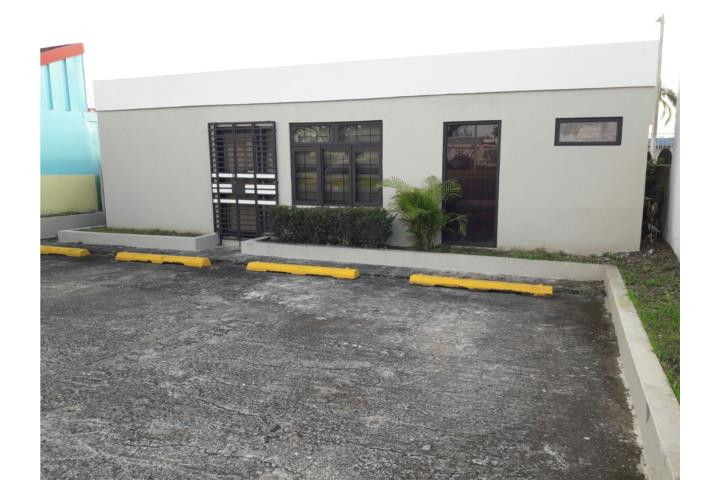 Almendros Puerto Rico