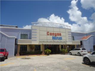 Mixed Use Commercial Property Barranquitas PR