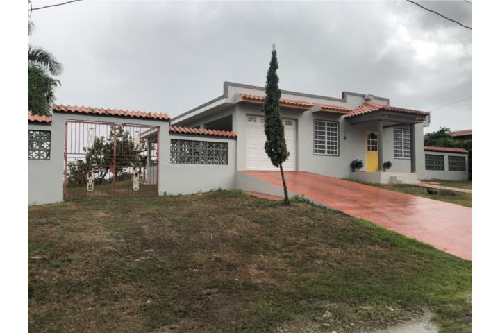 Los Martinez Puerto Rico