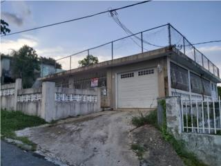 Comunidad Junquito, Humacao