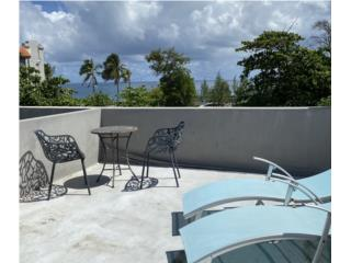 OPTIONED! 1B Apt with Roof Terrace (Airbnb) $179k