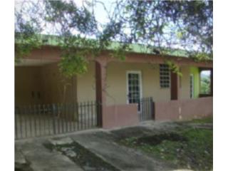 COM. Anton Ruiz Calle Tulipan 291