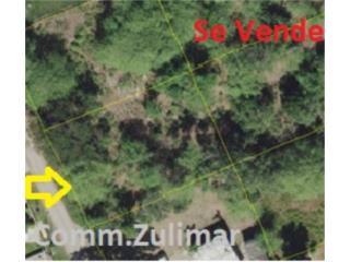 Sector Obdulia-Solar Com. Zulimar