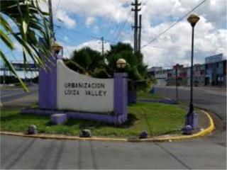 Urb. Loiza Valley