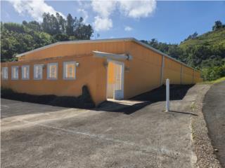 Centro sevicios a envejecientes en Palmarito