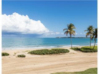 Tropical Luxury, Bahía Beach, garden.