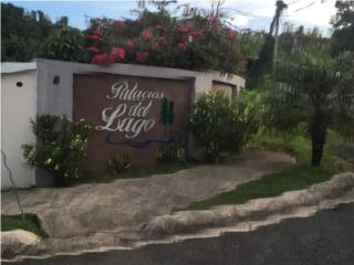 Solar Palacios Del Lago Cerro Gordo