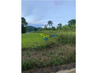 Hermoso terreno en Bo Nuevo Bayamón