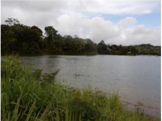 20 cuerdas a la orilla del Lago de Cidra