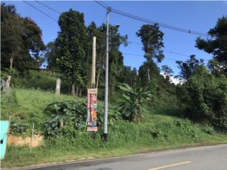 Guavate! Terreno de 1.8cds (7,035m/c) Casa