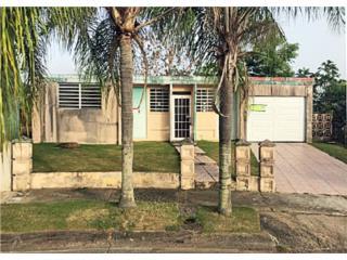 Villa Nueva, Caguas-  OPCIONADA
