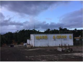 Local Comercial en Aguas Buenas, Bo. Caguitas