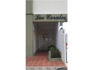 LOS CORALES - STUDIO