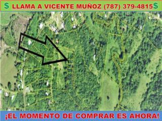 SR 363 K.M 08 SANTANA*PRONTO EN INVENTARIO*